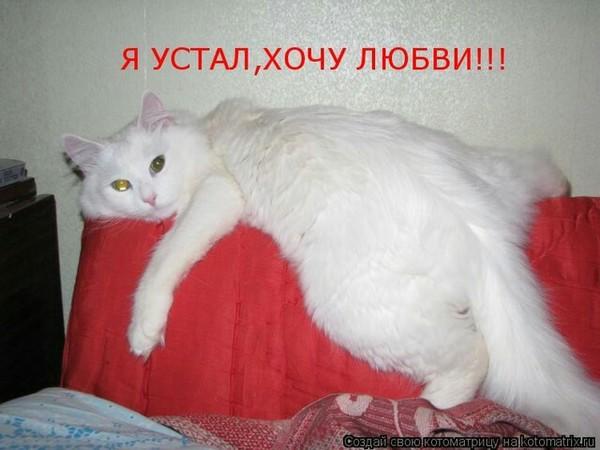 https://content.foto.my.mail.ru/mail/vyachser/_mypagephoto/i-40565.jpg