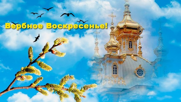 https://content.foto.my.mail.ru/mail/vyachser/_mypagephoto/i-40607.jpg