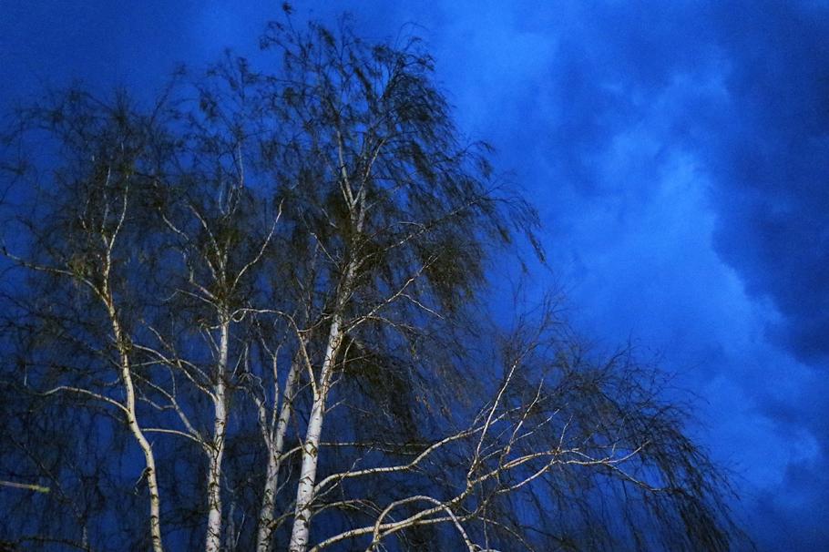 Вальпургиева ночь под Рязанью Санском, колхоз, Армии, чтобы, школы, свыше, часть, только, Красной, библиотека, Санской, Весна, грамм, дороги, ложка, крахмальный, славился, взрослые, Слева, передовых